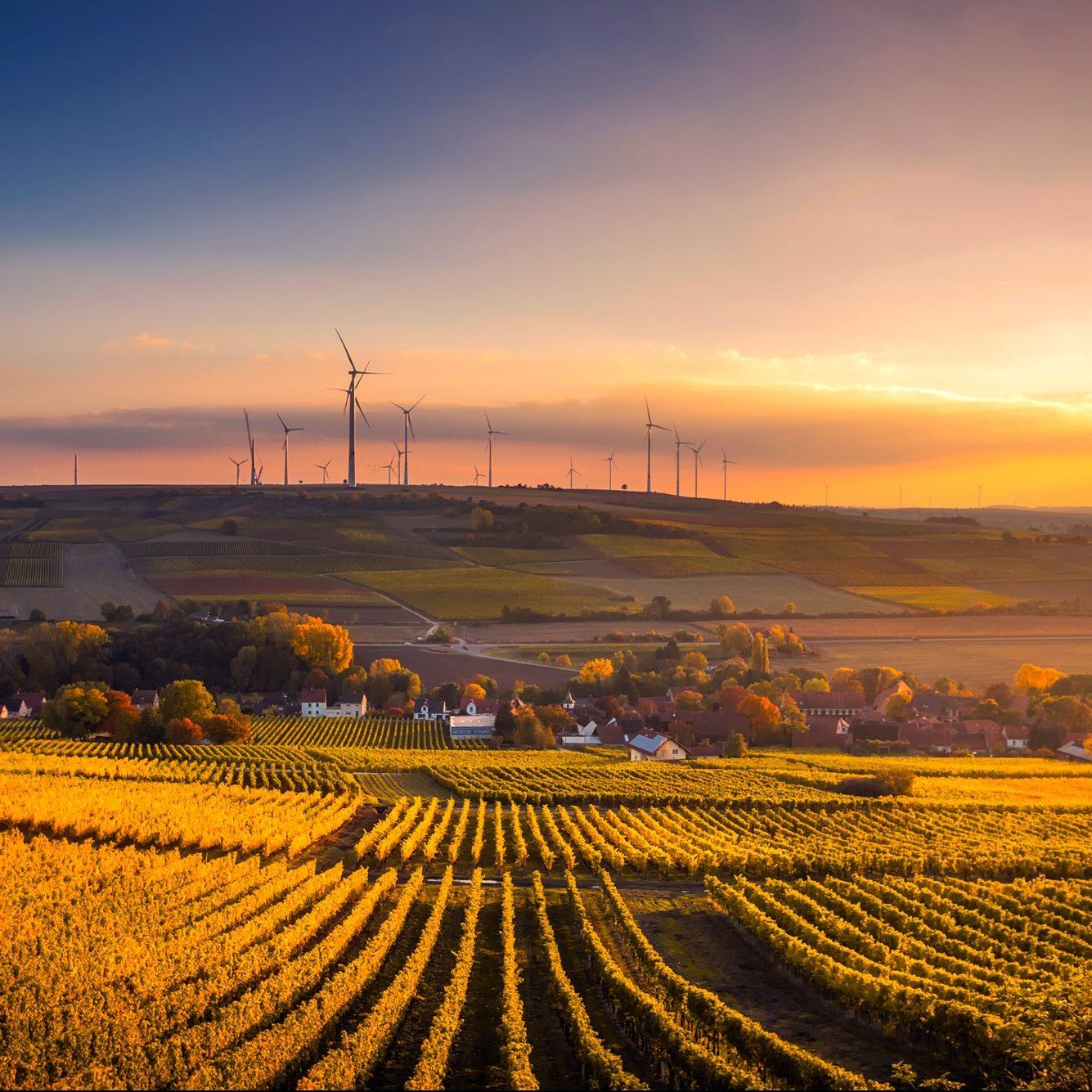 Klimaschutzkonzepte & CO₂-Bilanzen